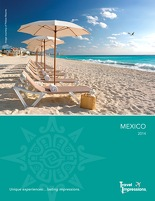 TI mexico brochure